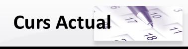 Curs Actual: On trobar-nos (Oficina Suport a la docència), Calendaris, Horaris, Informacio de Matrícula, Normatives, Tràmits acadèmics,...)